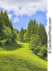 Landscape Allgaeu - Landscape on the Alpspitz near...