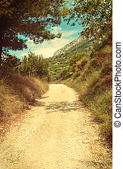 Road between olive trees in Croatia - vingage version -...