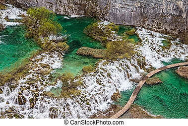 Plitvice lakes national park in Croatia. Vegetation just...