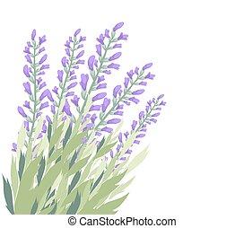 Watercolour lavender flower card