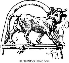 Heifer Pourtales tripod, vintage engraving. - Heifer...