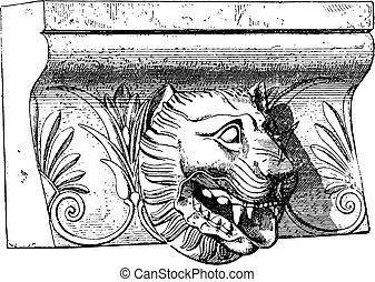 Lion Metaponto, vintage engraving.