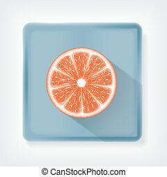 Grapefruit. Ison with long shadow. EPS10 vector