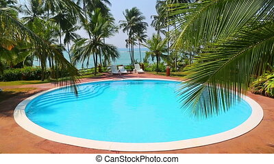 palm leaf and swimming pool on tropical resort
