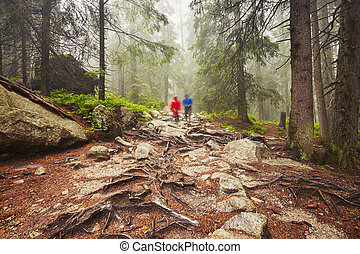 Travelers in the mountains - Travelers hiking through deep...