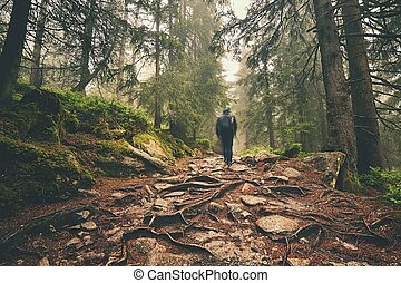 Traveler in the mountains - Traveler hiking through deep...