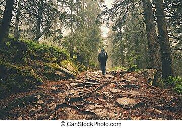 Traveler in the mountains - Traveler hiking through deep...