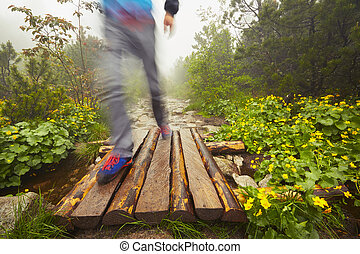 Traveler in the mountains - Travelers hiking in the...