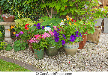 Colorful potted plants in garden corner. - Shady corner of a...