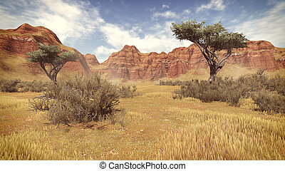 Trees in a canyon daytime 4 - Red striped rocks and desert...