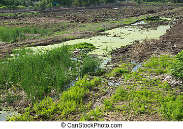 Vacant land - Vacant land grass and pond