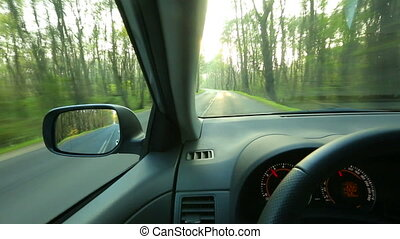Driving a car - Driving on the country road through a forest