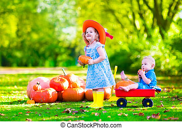 Kids playing at pumpkin patch