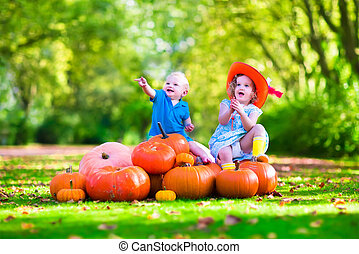 Kids playing at pumpkin patch at Halloween. Children play...