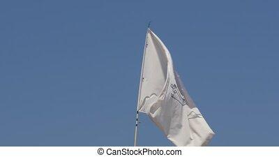 Corsica Flag, France, native camera output