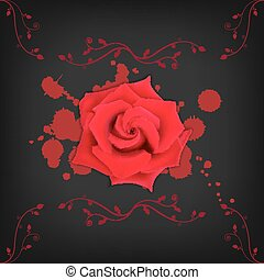 Red rose with splashes on black background Bloody splashes...