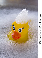 Yellow rubber duck floating in soap suds