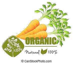 Carrots - Farm fresh organic carrots with leaves
