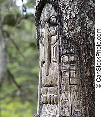 Tree carved by native Tlingit indians along a trail on top...