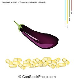 Ripe Eggplant with Vitamin B5, B6 and B9 - Healthcare...