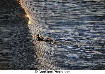 Surfer in Galveston, Texas, 2008