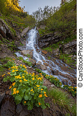 Beautiful small waterfall In Mountains, Ukraine. The White...
