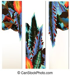 Brochures set with colorful feathers.eps