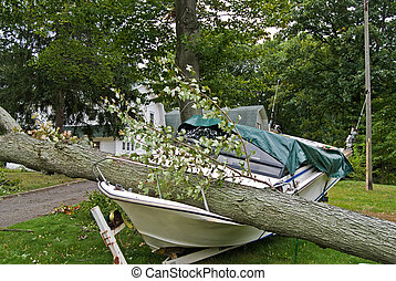 Insurance Claim - Fallen tree crushing a motorboat.