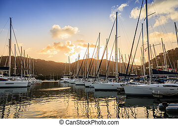 Marina in Tortola - Sailboats at a marina at Wickham's Cay...