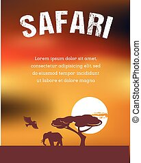 Africa, Safari poster design - Africa and Safari poster...