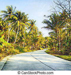 Road in Jungle - concrete road in jungle, Koh Samui,...