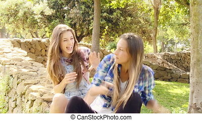 young woman friends laughing in a green park - Girlfriends...