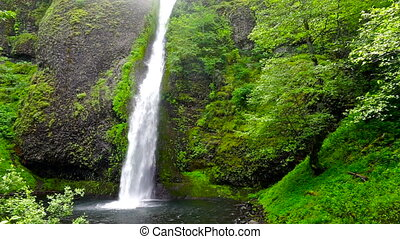 Waterfall - View of Horsetail Falls in Oregon