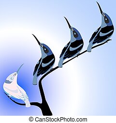 birds on branch - birds with long beaks on branch,...