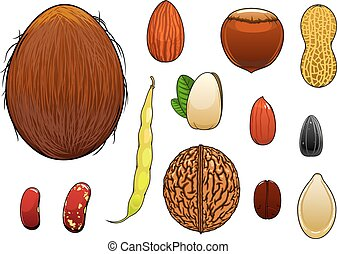 Realistic nuts, seeds and beans in cartoon style - Coconut,...