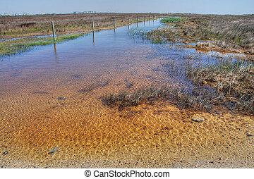 Coast near Galveston, Texas