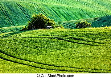 Moravian rolling landscape - European rural wallpaper -...