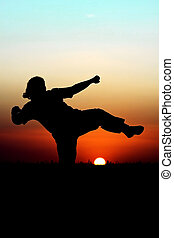 Sunset Martial Arts - Silhouette of person performing...