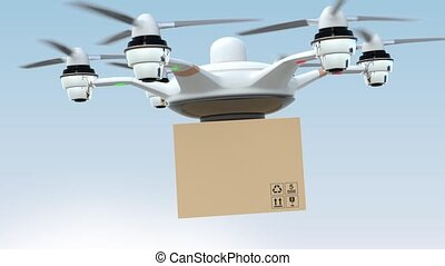 Drone delivery cardboard package to the order's home.