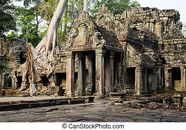 Preah Khan, part of Khmer Angkor temple complex, popular...