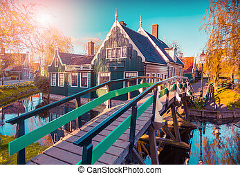 Tipical, Holenderski, Wieś, Zaanstad, w, wiosna,...