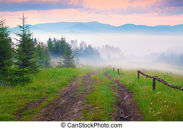Old dirty road in foggy Carpathian mountains.
