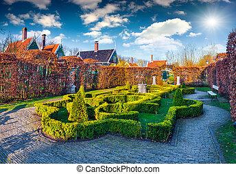 Mały, Zielonożółty, krzaki, ogród, artystyczny