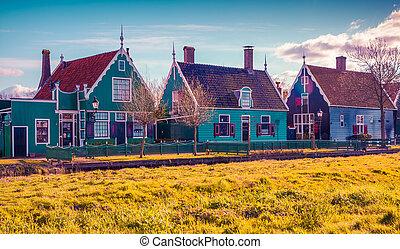 Tipical, Holenderski, Wieś, Zaanstad, w, wiosna, słoneczny,...