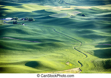 Farm Landscape In The Palouse