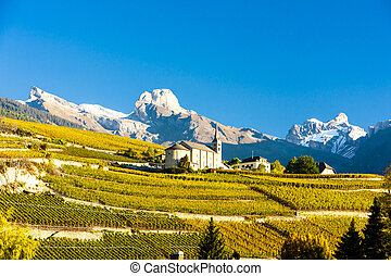 vineyards below church at Conthey, Sion region, canton...