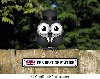 mejor, británico