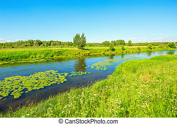 Summer countryside. - River and the meadow on a sunny summer...