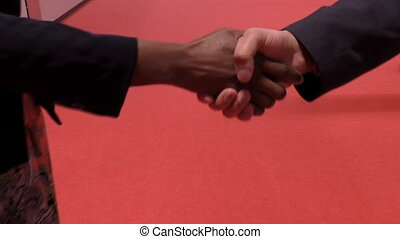 Male and female handshake - African businesswoman, woman and...