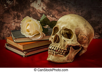 Still life with human skull with white rose, old book on red...